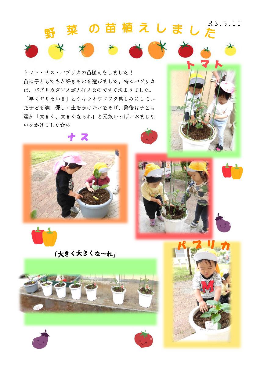 栃木県宇都宮市小規模保育園_野菜の苗植えhp_ページ_1